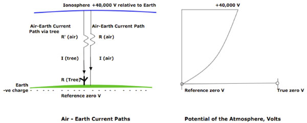 Figure 1: Air-Earth current paths and the Potential of the Atmosphere. The +40,000 V potential of the ionosphere compared to Ground (= Reference Zero* for Voltage measurements) causes a fine-weather air-Earth current I (air), part of which will pass through a tree, I(tree). The electrical resistance of the tree R(tree) will cause a small voltage drop dV(tree) over the height of the tree (see Fig. 2). The right hand figure shows diagrammatically that both the potential and the potential gradient of the atmosphere vary with height; near ground level, the potential gradient is ~365 Volts/metre. Values are taken from Chalmers (1950).  V = Voltage; I = Current; R = Resistance; -ve = negative. * Note that the Earth's surface is negatively charged; taking the Ground as reference zero for potential measurements is merely an arbitrary convention similar to taking the freezing point of water as the reference zero for temperature measurements in the Celsius scale.